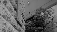 【飯田橋・神楽坂】お写んぽ日和 �D 〜熱海湯階段〜