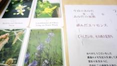 【レポ】第3回ちいさな森 癒しのイベント「ハートandボディーfeeling」
