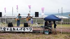 【レポ】第2回富士山れんげまつり