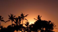 ハワイ島と秋のほしヨガお知らせ
