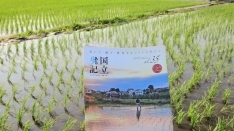 「国立歩記 vol.35 2016夏号」特集「土も水も、子ども達へのギフト」無料配布中!
