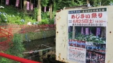 【6/25】あじさい祭り 谷保天満宮 厳島神社紫陽花園