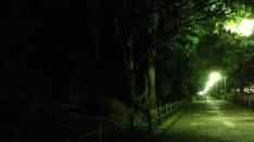 【連載】短編小説 風は吹いているか 第3話『9月になれば』千野龍也