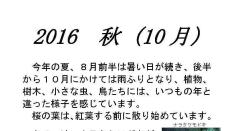 【10/16】くにたち桜守 10月の桜守活動のお知らせ