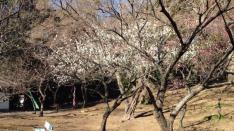 連載小説【風は吹いているか 第8話】2月の太陽 真昼の月