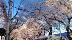 【風は吹いているか 第10話】】『矢川からはじめる』高杉竜也