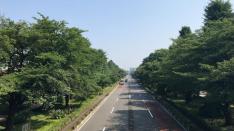 【7/10】「じゅん散歩」高田純次が国立を歩く!