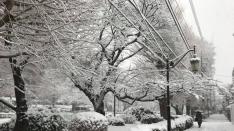 国立の雪景色2018