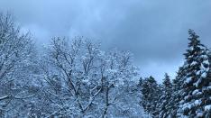 【連載-48】国立ランブリング「冬の旅から」小山伸二