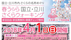 【4/1】春うらら国立・立川さくらウォーキング
