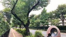 【国立アート散歩】さくら通りの野外彫刻展(前編)くにたちアートビエンナーレ2018