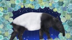 2019年1月の星占い by 星読みちえの「惑星ノート」 イラスト:ACOBA