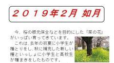 【くにたち桜守便り】国立大学通りの桜の様子と2月の桜守活動のお知らせ