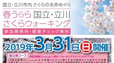 【3/31】国立・立川さくらウォーキング